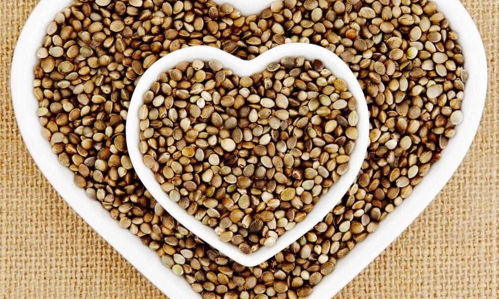 hamp-seeds